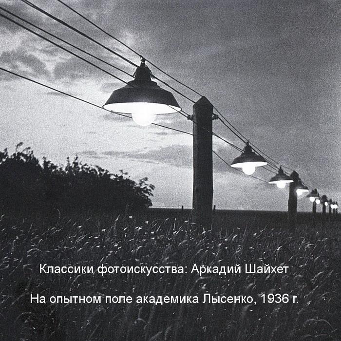 http://zlayakorcha.com/gz/1936_shaihet_pole_lisenko_m.jpg